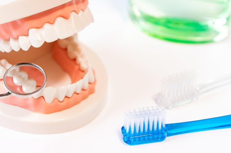 歯周病は生活習慣病の1つです